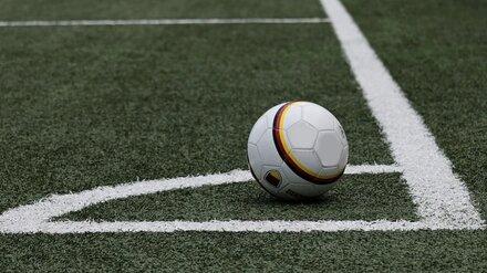 Фанаты воронежского «Факела» потребовали отставки директора клуба и тренера команды