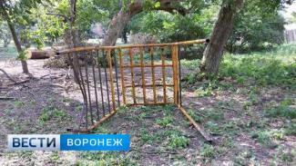 Воронежский СК возбудил уголовное дело после смерти ребёнка от полученных в парке травм