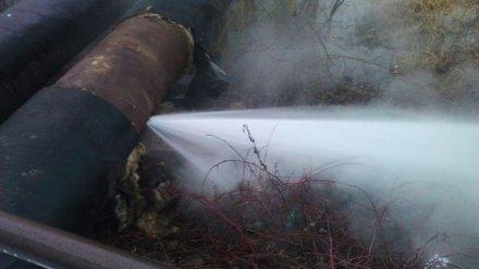 В Воронеже устранены проблемы с отоплением в 79 домах