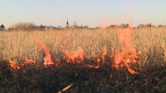 Спасатели назвали вероятную причину крупного пожара на Левом берегу