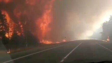 На помощь горящей Воронежской области приедут спасатели из 6 регионов