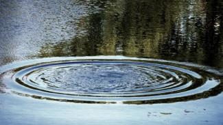 В Воронежской области дедушка прыгнул за сорвавшейся в реку внучкой: утонули оба
