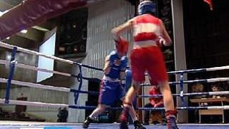 Первенство Коминтерновского района открыло боксерский сезон