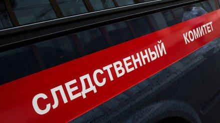 Воронежский СК назвал причину пожара, в котором погибли парень и 5-летний ребёнок