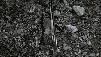В Воронежской области в машине нашли застреленного пенсионера