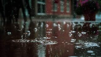На Воронежскую область надвигаются затяжные дожди