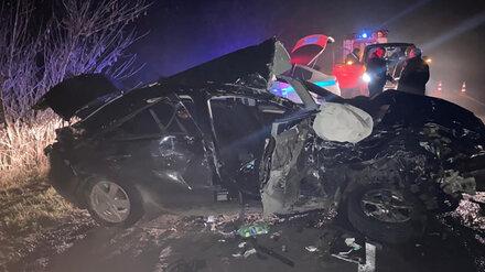 В Воронежской области в ДТП с микроавтобусом 1 человек погиб и 4 пострадали