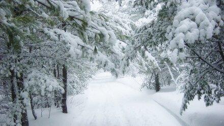 Воронежцев предупредили о надвигающихся сильных снегопадах