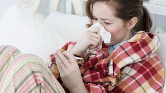Эпидемия гриппа и ОРВИ в области наиболее сильна именно в Воронеже