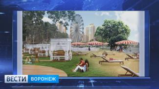 Воронежцы хотят в парке «Дельфин» смотровую площадку, а не колесо обозрения