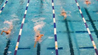 Спорткомплекс с бассейнами откроется в воронежском парке «Южный» до Нового года