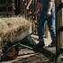 Воронежский фермер украл из бюджета 270 тыс. рублей