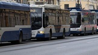 Количество троллейбусных маршрутов увеличат в Воронеже с четырёх до семи