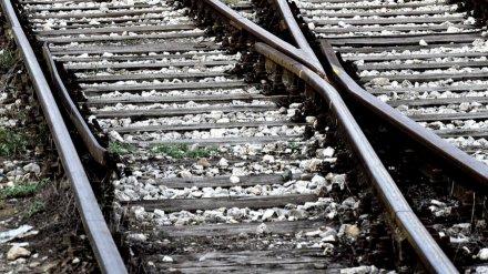 В Воронежской области у железной дороги нашли скелет