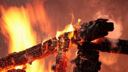 В сгоревшем доме в Воронежской области нашли труп мужчины