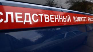 Воронежский СК возбудил дело о гибели малышей 2 и 3 лет при пожаре