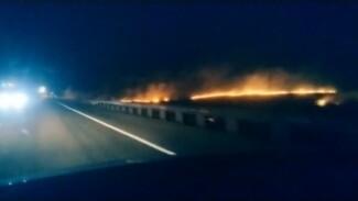 Под Воронежем сняли на видео ландшафтный пожар