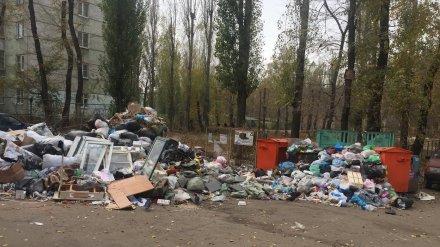 Воронежцы пожаловались на огромную свалку рядом с домами
