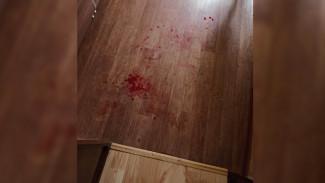 Под Воронежем проверят на вменяемость мать, ударившую ножом 4-летнюю дочь