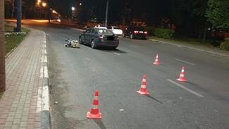 ДТП со сбитым в коляске младенцем в Воронеже привело к уголовному делу