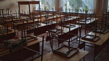 Власти задумались о переводе воронежских школьников на дистанционку