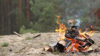 Воронежцам назвали точную дату начала противопожарного режима