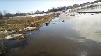 Затопленные из-за паводка мосты в воронежском селе попали на видео