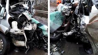 Появилось видео с места ДТП с 5 погибшими на трассе в Воронежской области