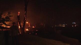 Уничтоживший 21 жилой дом лесной пожар в воронежском селе привёл к делу о халатности