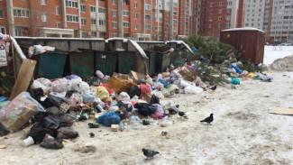 Тариф на вывоз мусора в Воронежской области предложили снизить на треть