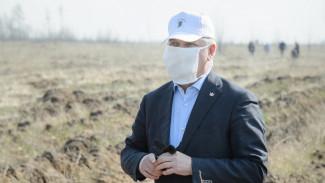 Под Воронежем высадили абрикосовые сады к 75-летию Победы