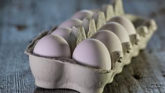 На фабрике одного из крупнейших воронежских производителей яиц нашли птичий грипп