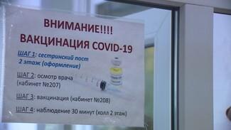 В Воронежской области более 756 тыс. человек сделали прививку от коронавируса