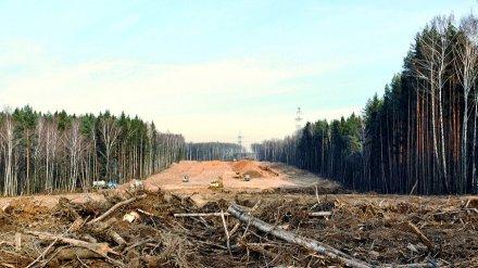 В Воронеже утвердили проект планировки участка под строительство дороги в Боровом