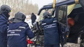 Молодую автомобилистку зажало в иномарке после тройного ДТП с погибшим под Воронежем