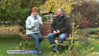 Воронежцам назвали главные ошибки осенней обрезки деревьев