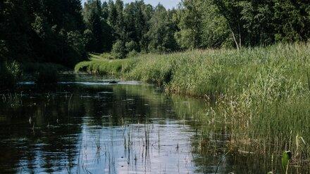 Под Воронежем в Усманке всплыл труп женщины