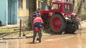 Для устранения коммунальной аварии в Воронеже демонтировали столб и спилили деревья