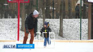Воронежцы о катках в городских парках: мы уже привыкли ко всему платному