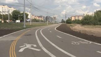 Воронеж охватят велокольцом. Власти рассказали о развитии в городе новой инфраструктуры