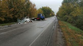 Два человека пострадали в массовом ДТП с фурами на трассе в Воронежской области