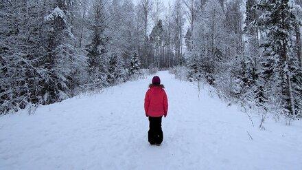 Пропавшую в Воронеже во время прогулки 11-летнюю девочку нашли живой