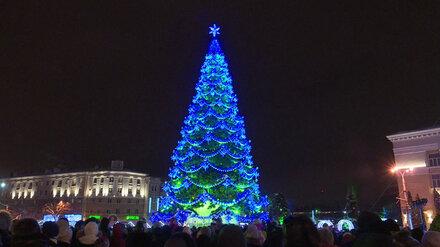 В Воронеже отказались от предложения установить главную новогоднюю ёлку за 1 копейку