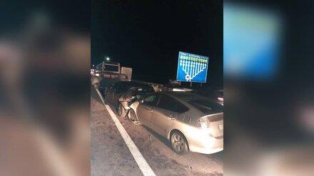 Трое детей и трое взрослых пострадали в массовом ДТП с автобусом в Воронежской области
