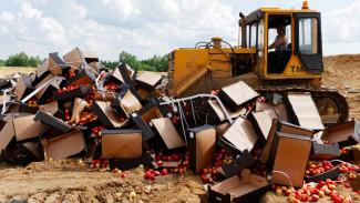 Спасти санкционку. Воронежские санврачи готовы проверить конфискованные продукты на безопасность
