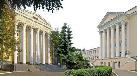 Воронежский опорный вуз дополнительно получит 80 млн рублей