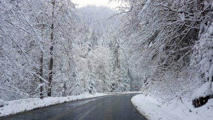 Воронежские синоптики «отменили» многодневный снегопад