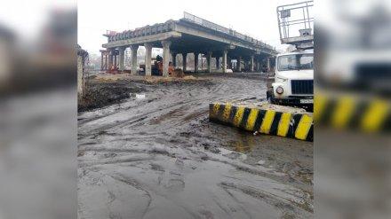 «По щиколотку в грязи». Активист попросил мэра о переходе у виадука на 9 Января в Воронеже