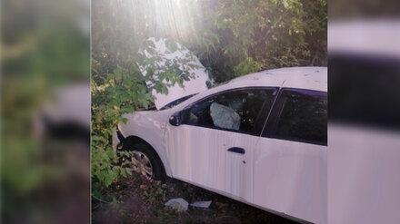 В ДТП с деревом в Воронеже пострадала 15-летняя девочка