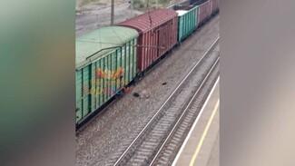 В Воронеже поезд насмерть сбил парня